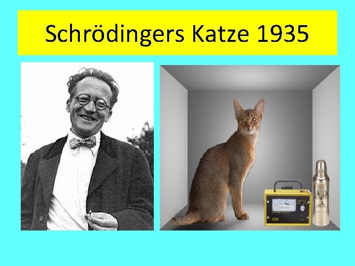 Schrödingers Katze 1935