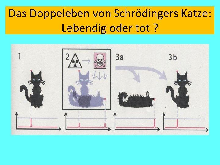 Das Doppeleben von Schrödingers Katze: Lebendig oder tot ?