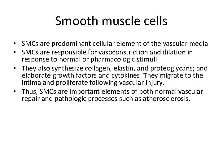 Smooth muscle cells • SMCs are predominant cellular element of the vascular media •