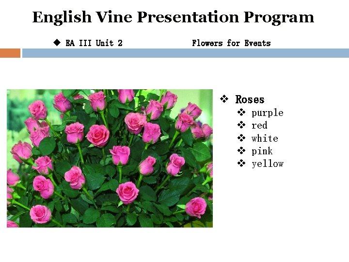 English Vine Presentation Program u EA III Unit 2 Flowers for Events v Roses