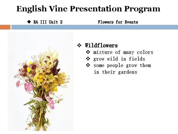 English Vine Presentation Program u EA III Unit 2 Flowers for Events v Wildflowers