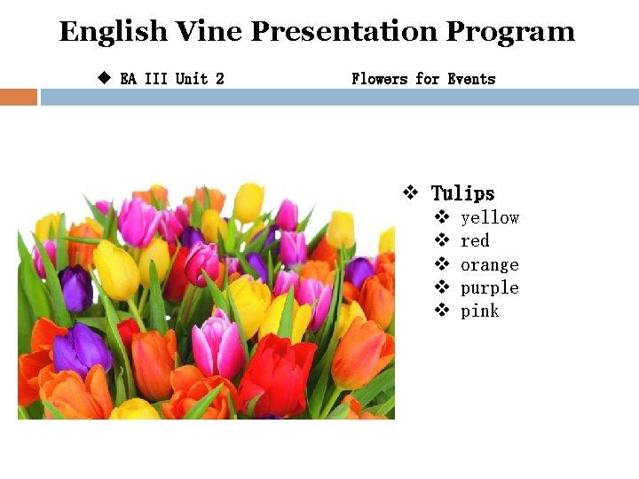 English Vine Presentation Program u EA III Unit 2 Flowers for Events v Tulips