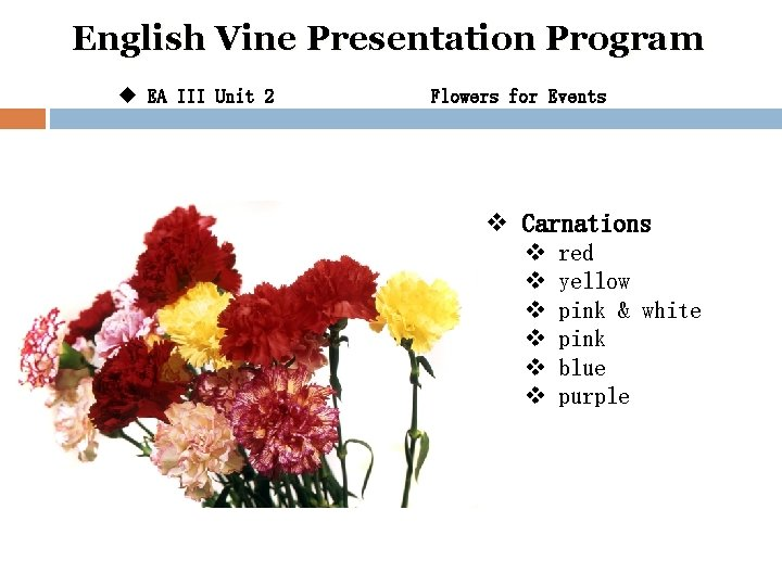 English Vine Presentation Program u EA III Unit 2 Flowers for Events v Carnations