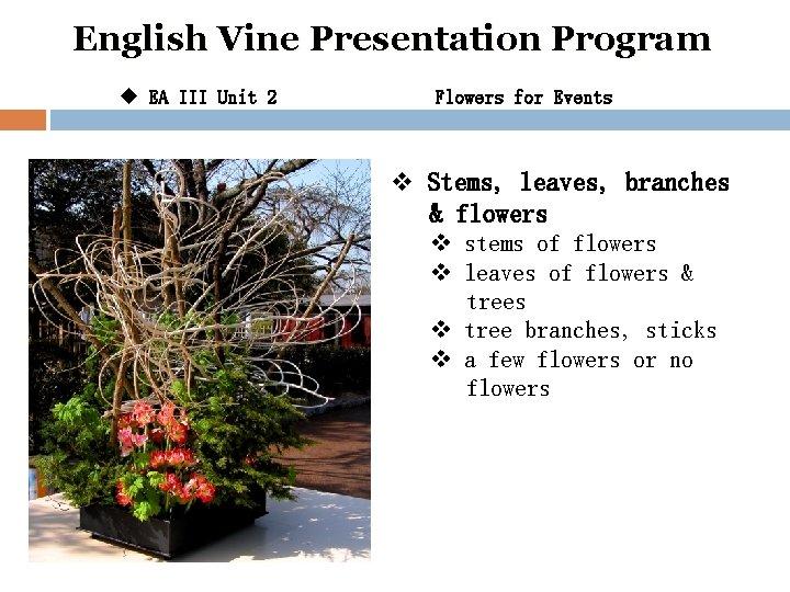English Vine Presentation Program u EA III Unit 2 Flowers for Events v Stems,