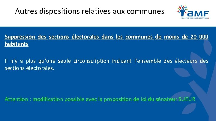 Autres dispositions relatives aux communes Suppression des sections électorales dans les communes de moins