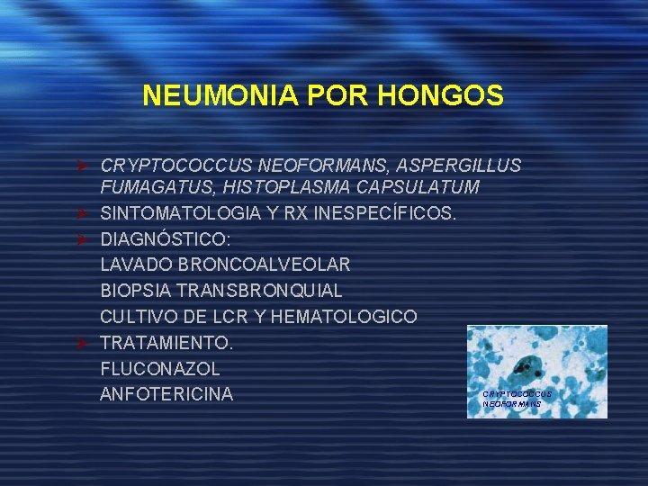 NEUMONIA POR HONGOS Ø CRYPTOCOCCUS NEOFORMANS, ASPERGILLUS FUMAGATUS, HISTOPLASMA CAPSULATUM Ø SINTOMATOLOGIA Y RX