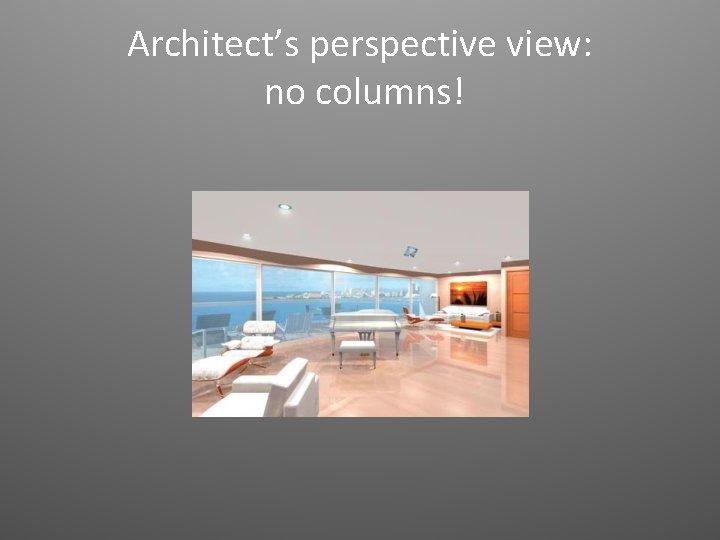 Architect's perspective view: no columns!