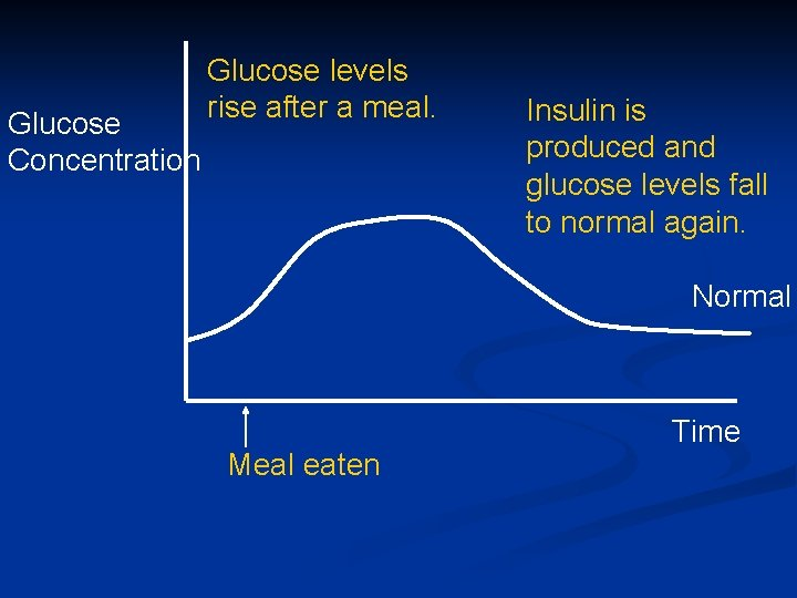 Glucose Concentration Glucose levels rise after a meal. Insulin is produced and glucose levels