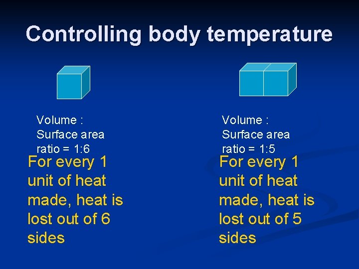 Controlling body temperature Volume : Surface area ratio = 1: 6 For every 1