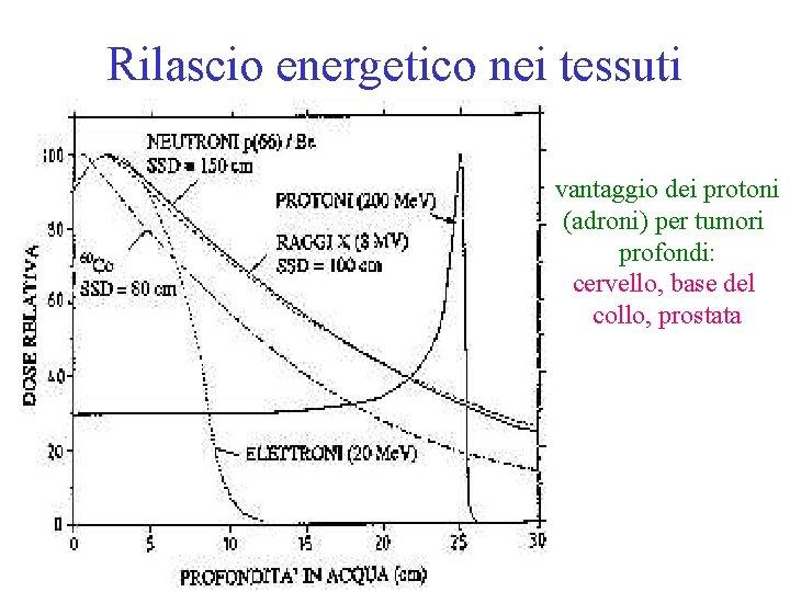Rilascio energetico nei tessuti vantaggio dei protoni (adroni) per tumori profondi: cervello, base del