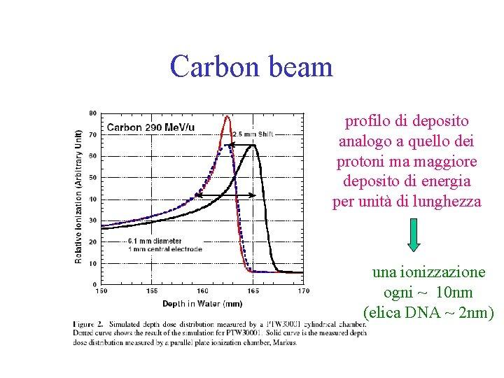 Carbon beam profilo di deposito analogo a quello dei protoni ma maggiore deposito di