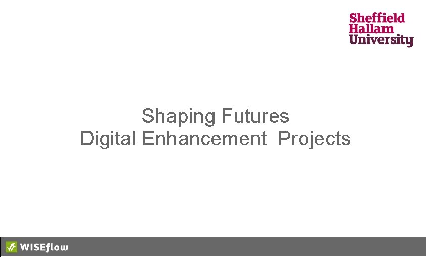 Shaping Futures Digital Enhancement Projects