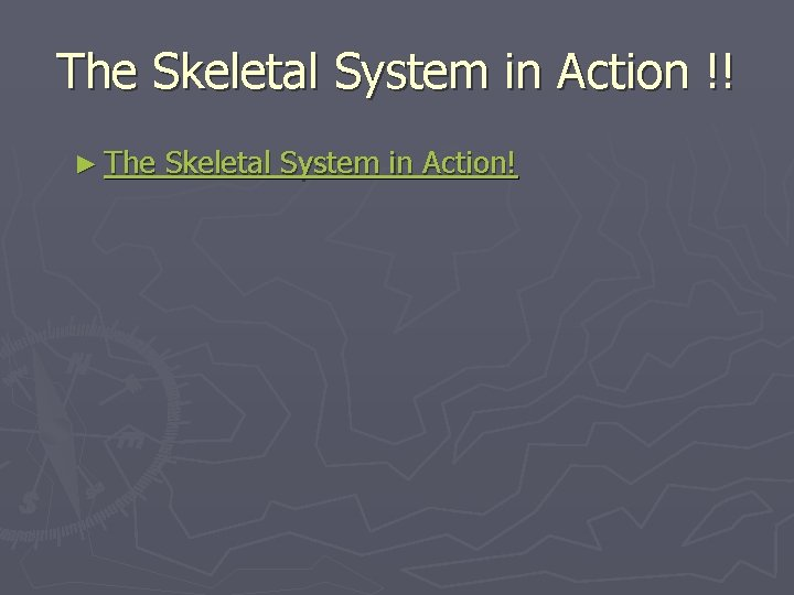 The Skeletal System in Action !! ► The Skeletal System in Action!