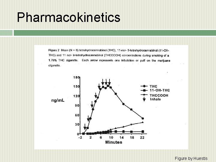 Pharmacokinetics Figure by Huestis