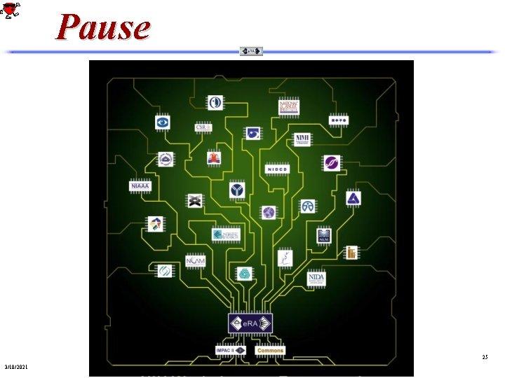 Pause 25 3/10/2021
