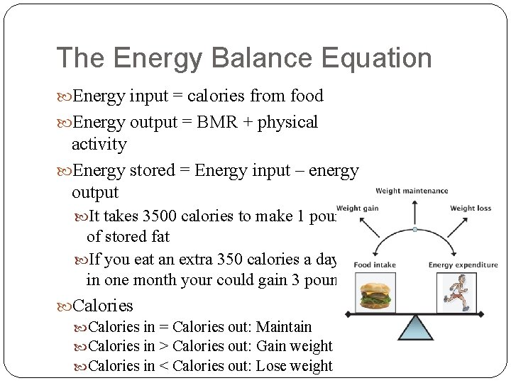 The Energy Balance Equation Energy input = calories from food Energy output = BMR