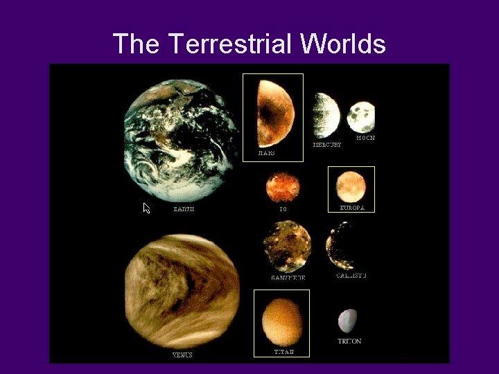 The Terrestrial Worlds