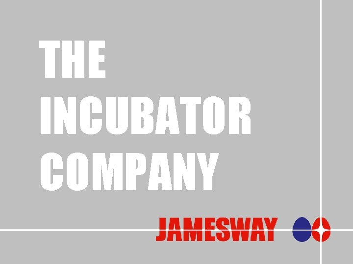 THE INCUBATOR COMPANY