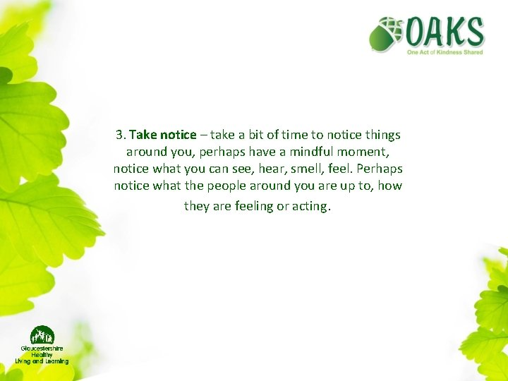 3. Take notice – take a bit of time to notice things around you,