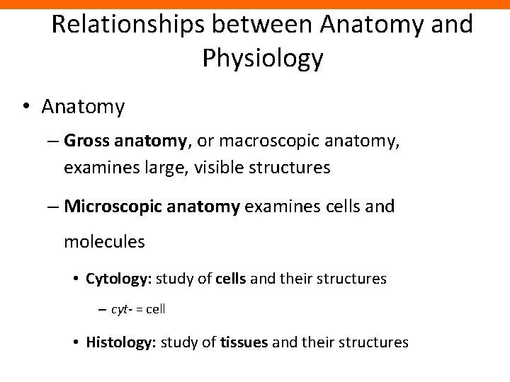 Relationships between Anatomy and Physiology • Anatomy – Gross anatomy, or macroscopic anatomy, examines