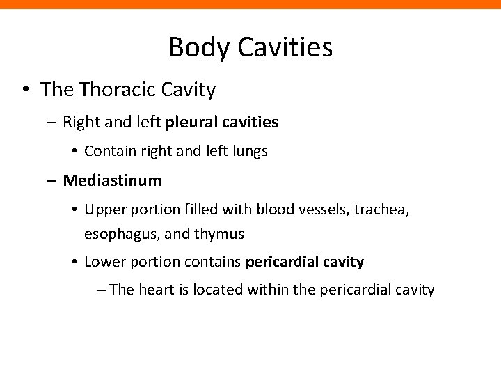 Body Cavities • The Thoracic Cavity – Right and left pleural cavities • Contain