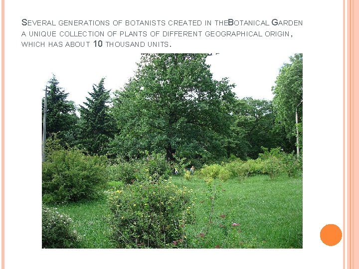 SEVERAL GENERATIONS OF BOTANISTS CREATED IN THEB OTANICAL GARDEN A UNIQUE COLLECTION OF PLANTS