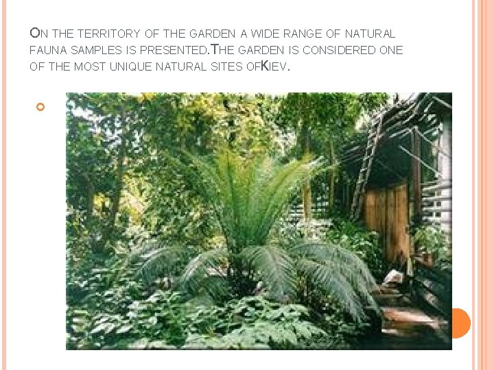 ON THE TERRITORY OF THE GARDEN A WIDE RANGE OF NATURAL FAUNA SAMPLES IS