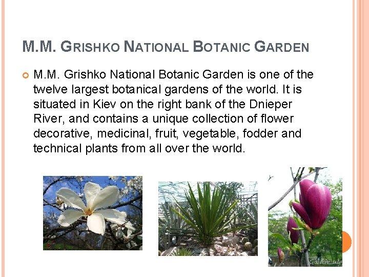 M. M. GRISHKO NATIONAL BOTANIC GARDEN M. M. Grishko National Botanic Garden is one