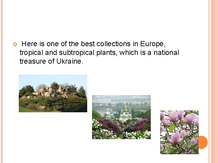 Here is one of the best collections in Europe, tropical and subtropical plants,