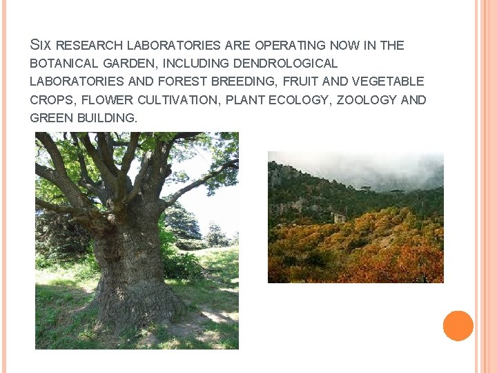 SIX RESEARCH LABORATORIES ARE OPERATING NOW IN THE BOTANICAL GARDEN, INCLUDING DENDROLOGICAL LABORATORIES AND