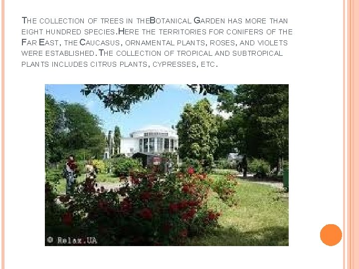 THE COLLECTION OF TREES IN THEB OTANICAL GARDEN HAS MORE THAN EIGHT HUNDRED SPECIES.