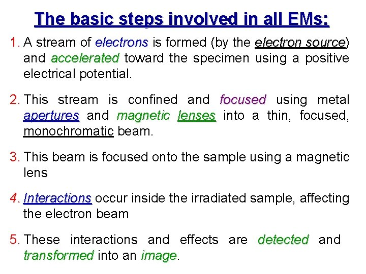 The basic steps involved in all EMs: 1. A stream of electrons is formed