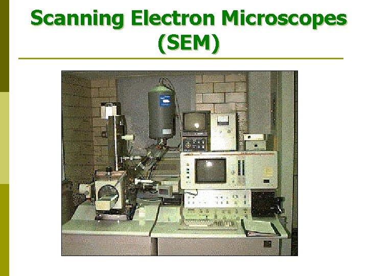 Scanning Electron Microscopes (SEM)