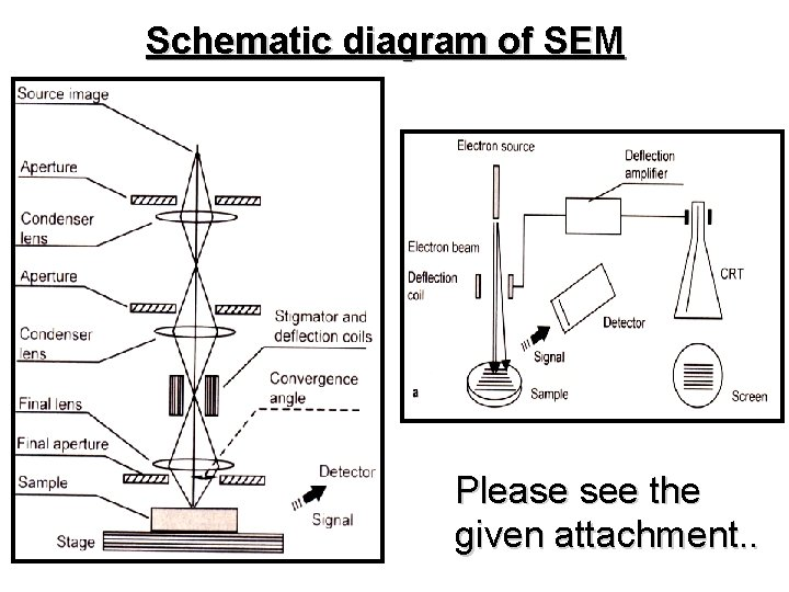 Schematic diagram of SEM Please see the given attachment. .