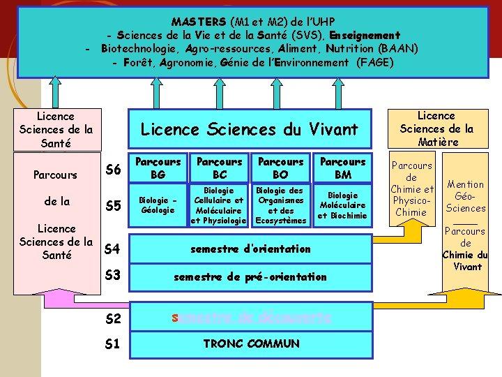 Licence sciences et technologie MASTERS (M 1 et M 2) de l'UHP - Sciences