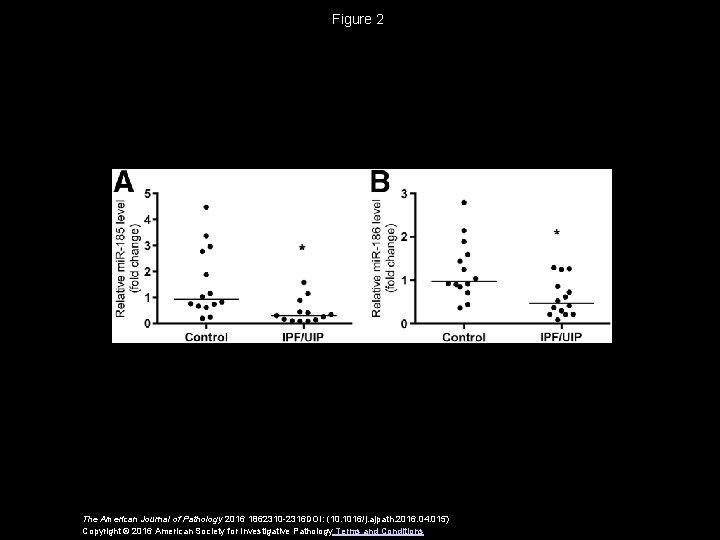 Figure 2 The American Journal of Pathology 2016 1862310 -2316 DOI: (10. 1016/j. ajpath.