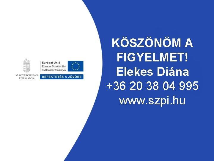 KÖSZÖNÖM A FIGYELMET! Elekes Diána +36 20 38 04 995 www. szpi. hu