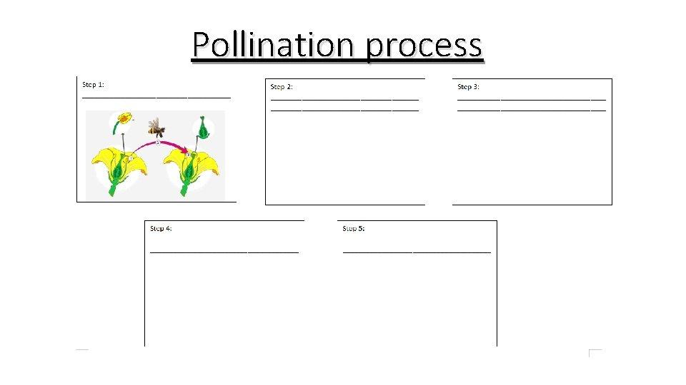 Pollination process