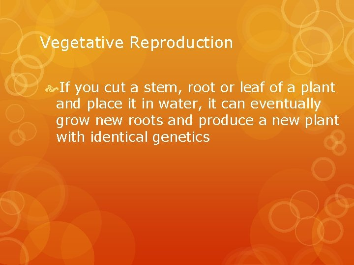 Vegetative Reproduction If you cut a stem, root or leaf of a plant and