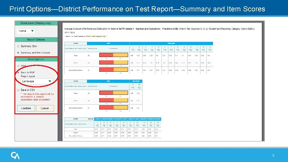 Print Options—District Performance on Test Report—Summary and Item Scores 5