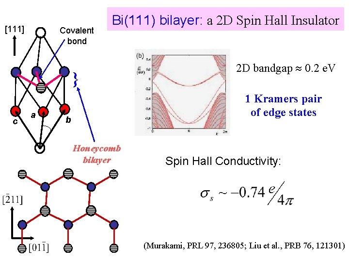 [111] Covalent bond Bi(111) bilayer: a 2 D Spin Hall Insulator } c a