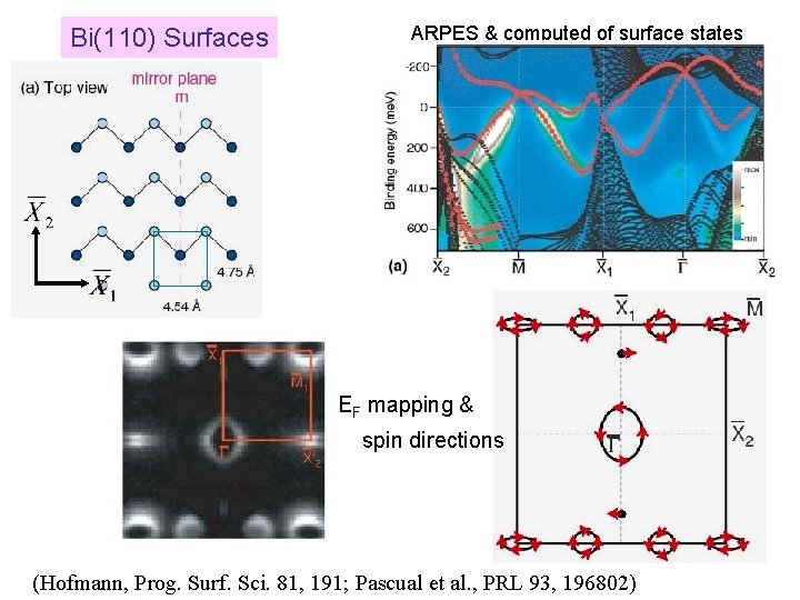 Bi(110) Surfaces ARPES & computed of surface states EF mapping & spin directions (Hofmann,