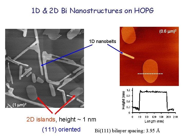 1 D & 2 D Bi Nanostructures on HOPG (0. 6 m)2 1 D