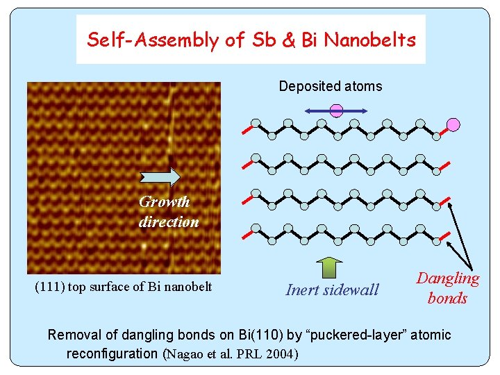 Self-Assembly of Sb & Bi Nanobelts Deposited atoms Growth direction (111) top surface of