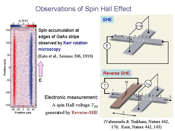 Observations of Spin Hall Effect SHE Spin accumulation at edges of Ga. As stripe