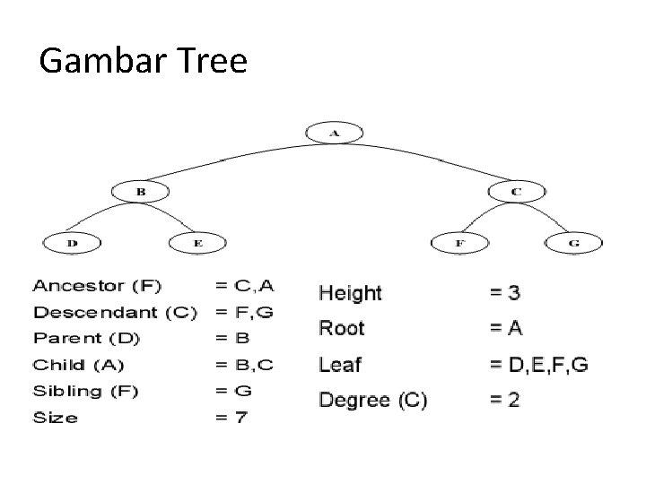 Gambar Tree