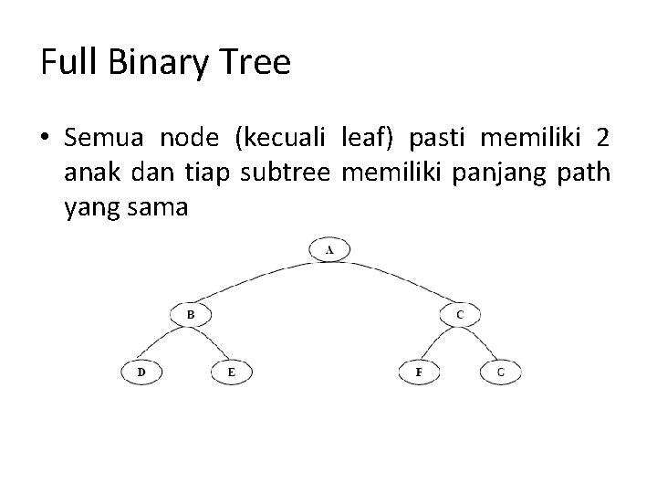 Full Binary Tree • Semua node (kecuali leaf) pasti memiliki 2 anak dan tiap