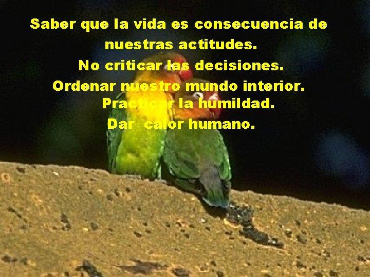 Saber que la vida es consecuencia de nuestras actitudes. No criticar las decisiones. Ordenar