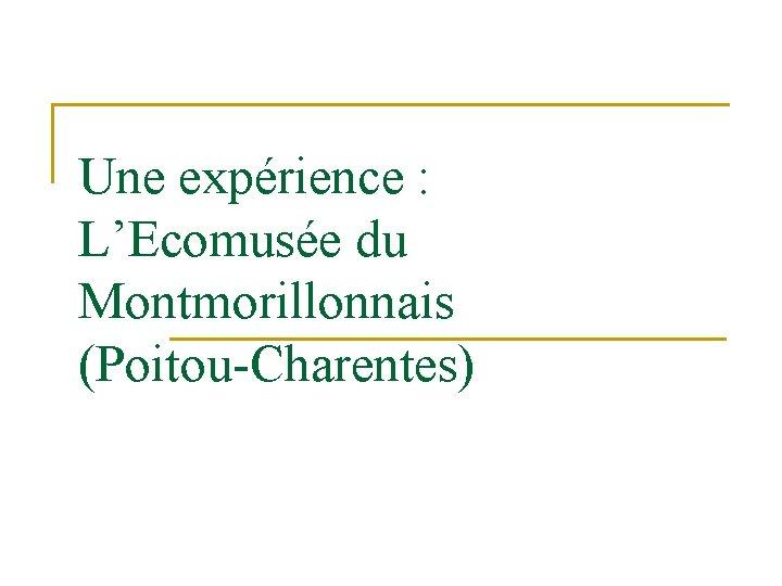 Une expérience : L'Ecomusée du Montmorillonnais (Poitou-Charentes)