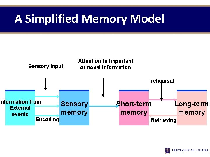 A Simplified Memory Model Sensory input Attention to important or novel information Information from